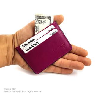 Credit Card Holder Series K1.003
