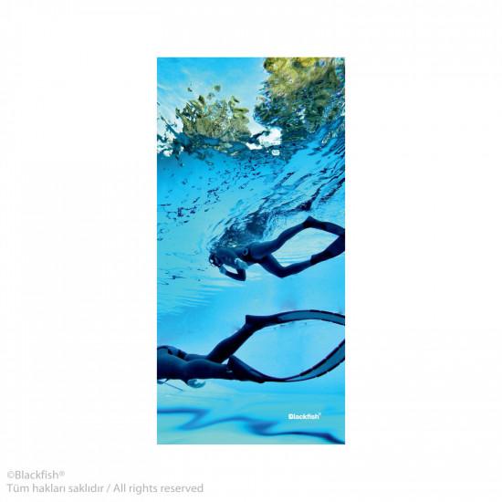 Diving Series B2.D1.01